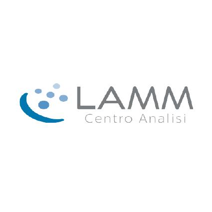 Logo lamm centro analisi